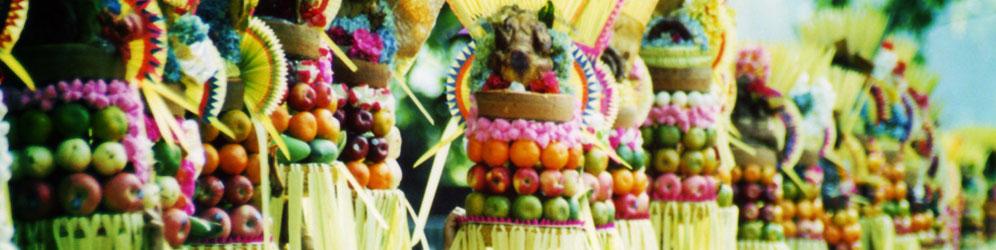 41 Bali Touren